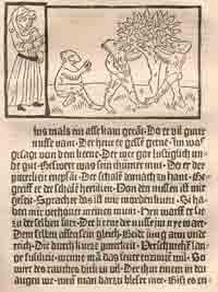 A page from Der Edelstein printed by Albrecht Pfister showing the integration of images with the printed text.