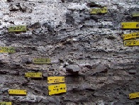 <p>Sediments containing ancient mattresses at Sibudu Caves.&nbsp; Photo by Lyn Wadley.</p>