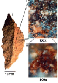Stone tools (segments) with adhesive from Sibudu Cave.  Segment with red ochre visible to the naked eye as well as microscopic views of red ochre and plant gum on the tool. (Click on image to view larger.)