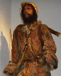 <p>Model of &Ouml;tzi the Iceman in exhibit at the South Tyrol Museum of Archaeology.</p>