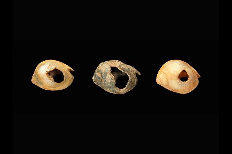 Resultado de imagen para antique Nassarius beads