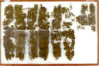 Fragments of the Ramesseum Papyrus.