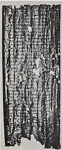 Papyrus recovered from the Villa of the Papyri